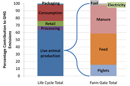 GHG Emissions from Life Cycle Stages of US Pork Production