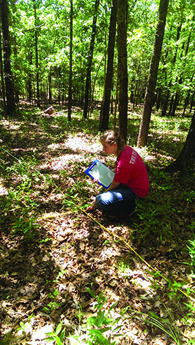 Student collecting data at the U of A SEFOR facility